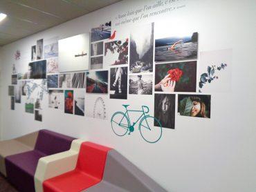 Pêle-mêle panoramique sur les murs de l'Université Rennes 2