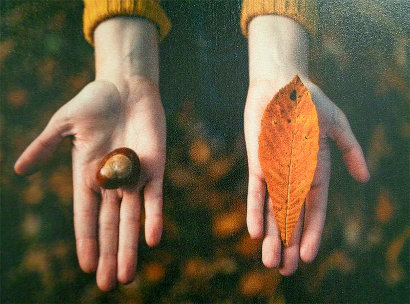 Photo imprimée sur toile murale.